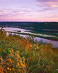 Trempealeau County, WI<br /> The view of the Mississippi River from Brady's Bluff with prairie grasses in the foreground in evening light in Perrot State Park