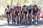 Race leader Red Jersey Primoz Roglic (SLO) Jumbo-Visma, Rafal Majka (POL) and David de la Cruz (ESP) UAE Team Emirates, Enric Mas (ESP) Movistar Team and Adam Yates (GBR) Ineos Grenadiers on the front of the GC group during Stage 7 of La Vuelta d'Espana 2021, running 152km from Gandia to Balcon de Alicante, Spain. 20th August 2021.     <br /> Picture: Luis Angel Gomez/Photogomezsport | Cyclefile<br /> <br /> All photos usage must carry mandatory copyright credit (© Cyclefile | Luis Angel Gomez/Photogomezsport)