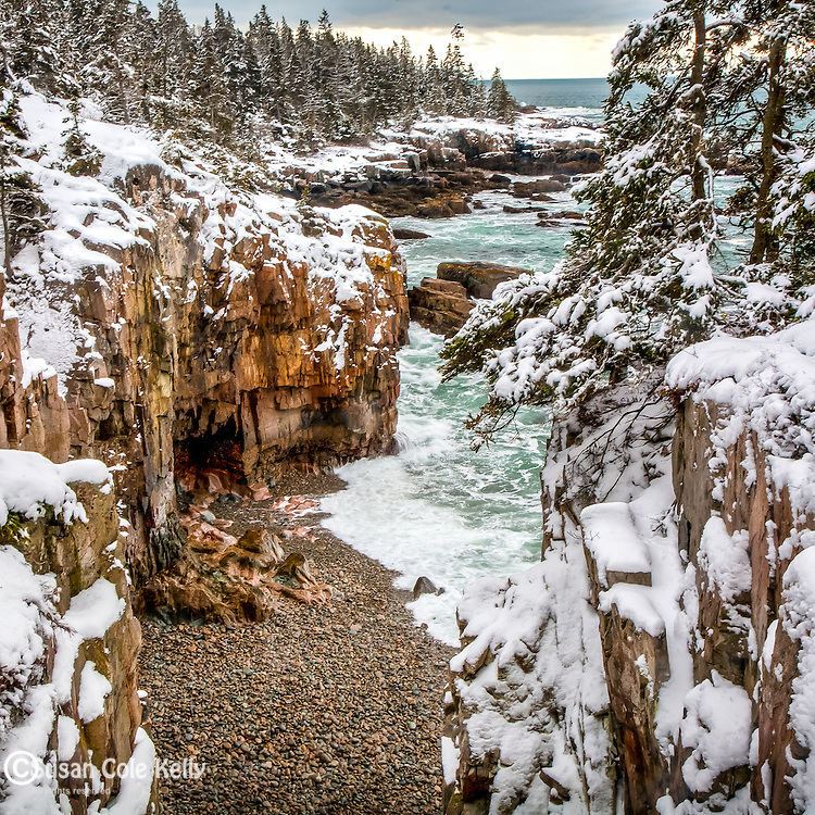Winter storm at Ravens Roost in Acadia National Park, ME
