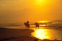 Horseback riding on the north shore of Oahu during sunset