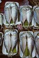 Asie/Thaïlande/Chiang Mai : Sur le marché, étal de poissons