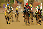 Juan Leyva aboard Musical Romance Wins Sentient Jet Breeders' Cup Filly & Mare Sprint (Grade 1) at Churchill Downs in Louisville, KY  on 11/04/11. (Ryan Lasek / Eclipse Sportwire)