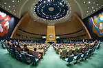 General Assembly Seventy-fourth session,