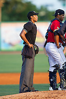 Home plate umpire Ronnie Whiting listens to the conversation on the mound between Charleston RiverDogs payers during the South Atlantic League game against the Greenville Drive at Joseph P. Riley, Jr. Park on May 26, 2014 in Charleston, South Carolina.  The Drive defeated the RiverDogs 11-3.  (Brian Westerholt/Four Seam Images)