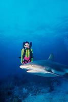 Michelle Cove uses Atlantis rebreather to dive with Caribbean reef shark, Carcharhinus perezii, Nassau, Bahamas, Caribbean Sea, Atlantic Ocean
