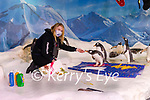 Ocean World aquarist Louise Overy helping the penguins creating art with their feet. The prints will be sold for fundraising.