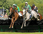 23 May 09: Farah T Salute, William Santoro up, and Jellyberry, Paddy Young up, lead the way in The Valentine Memorial Sport of Queen's Stakes at the Fair Hill Steeplechase Races in Maryland