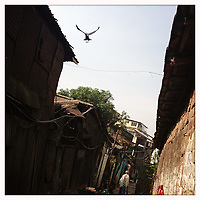 Images from India