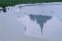 Europe/France/Normandie/Basse-Normandie/50/Manche/Baie du Mont Saint-Michel: Reflet du mont