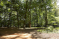 FOREST_LOCATION_90093
