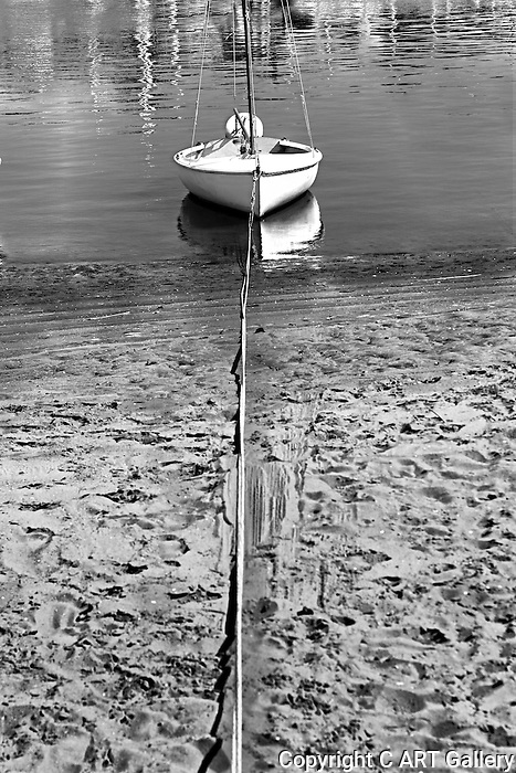 Dinghy tied to shore