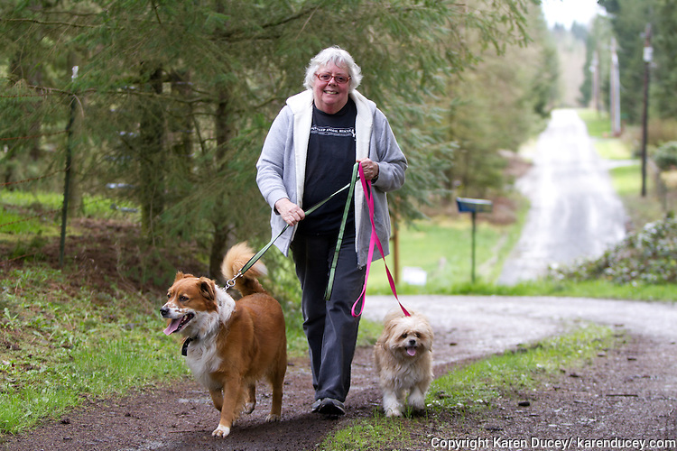 Sally Andrews, Vice President and Secretary of the Puyallup Animal Rescue takes Buddy (right), a 4 year-old Australian Shepherd and his pal Rosie, a 10 year-old Shih-Tzu mix for a quick walk.  Their owner from Okanogan County, Washington had to give them up when he went into hospice.