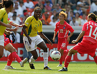 USA fan, 2003 WWC USA Sweden.