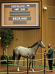 LEXINGTON, KY - September 13: Hip # 320 Tapit - Elarose Colt consigned by Lane's End sold for $625,000 at the September Yearling sale at Keeneland.  September 13, 2016 in Lexington, KY (Photo by Candice Chavez/Eclipse Sportswire/Getty Images)