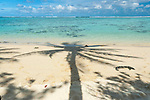Coconut tree shadow on the beach in Rarotonga, Cook Islands