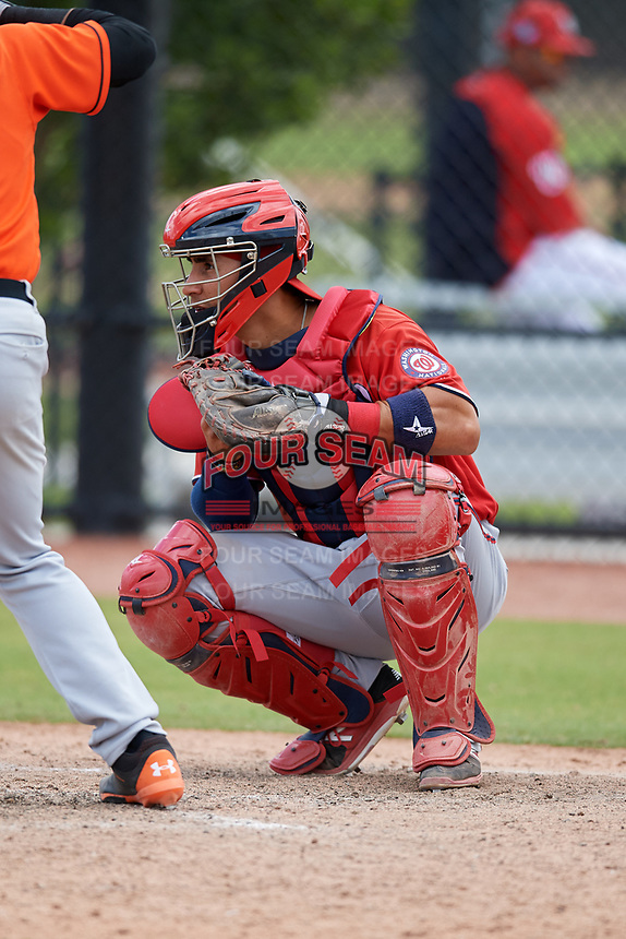 Washington Nationals Tres Barrera (26) during a Minor League Spring Training game against the Miami Marlins on March 28, 2018 at FITTEAM Ballpark of the Palm Beaches in West Palm Beach, Florida.  (Mike Janes/Four Seam Images)