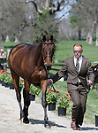 April 22, 2015:  Bruce Buck Davidson Jr and #45 Petite Flower at the Rolex Three Day Event first horse inspection.  Candice Chavez/ESW/CSM
