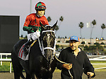 November 27, 2011.Ultimate Eagle ridden by Martin Pedroza heading for the winner's circle after winning the Hollywood Derby  at Hollywood Park, Inglewood, CA