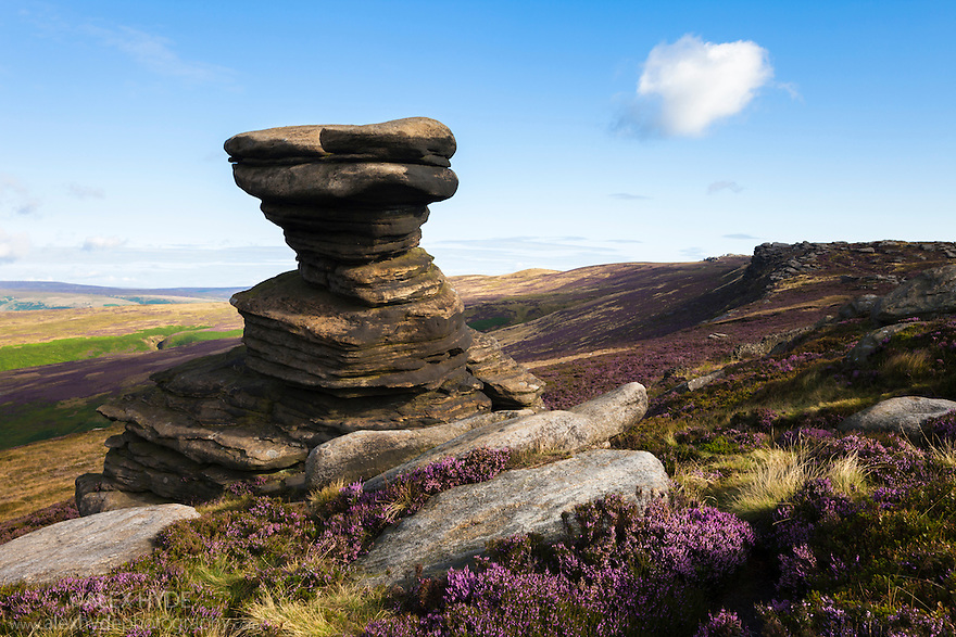 A millstone grit formation known as the 'Salt Cellar' on Derwent Edge, with Common Heather / Ling {Calluna vulgaris} in bloom. Peak District National Park, Derbyshire, UK. August.