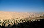 Jordan, landscape south of Madaba&#xA;<br />