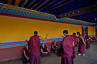 Debating Monks in the afternoon, the colors of the Tibetan Monestries and Temples in Tibet.The Jokhang Temple is one of Tibet's holiest shrines, originally built in 647 A.D. in celebration of the marriage of the Tang Princess Wencheng and the Tubo King Songtsen Gampo. In front of the gate is a stone Tablet of Unity from the Tang Dynasty; inscribed are both Chinese characters and Tibetan script. Nearby is the stump of the willow tree said to have been planted by Princess Wencheng herself; two younger willow trees now flank the stump of the first tree...Located in the center of old Lhasa, the temple was built by craftsmen from Tibet, China, and Nepal and thus features different architectural styles. The temple is also the spiritual center of Tibet and the holiest destination for all Tibetan Buddhist pilgrims. In the central hall is the Jokhang's oldest and most precious object--a gold statue of a seated 12-year-old Sakyamuni. This is said to have been transported to Tibet by Princess Wencheng from her home in Changan in 700 A.D. Other precious antiques in the temple include a silk portrait of Buddha from the Tang Dynasty and a pearl gown and gold lamp from the Ming Dynasty. The three-leafed roof of the Jokhang offers splendid views of the bustling Barkhor market and across to the Potala Palace..