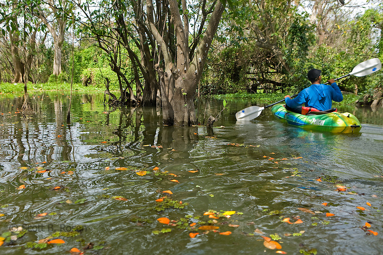 Nicaraguan tour guide paddles on kayak in the Rio Istian, a lush and narrow river of tangled vines and floating water lilies that meanders across the isthmus separating the two volcanoes.