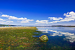 Penrose Point State Park offers camping, fishing, claming, hiking and picnicking on one of Puget Sound's most scenic southern beaches.  Near Lake Bay, Bay Lake, and towns of Union and Home on the Key Penninsula in southern Puget Sound. Olympic Peninsula