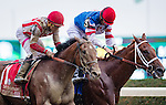 ELMONT, NY - OCTOBER 08: Practical Joke #1, ridden by Joel Rosario, and Syndergaard #3, ridden by John Velazquez, after racing the 145th Running of The Champagne, on Jockey Club Gold Cup Day at Belmont Park on October 8, 2016 in Elmont, New York. (Photo by Douglas DeFelice/Eclipse Sportswire/Getty Images)