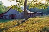 Old barn in meadow