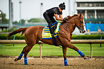 LOUISVILLE, KY - MAY 03: Justify, trained by Bob Baffert, exercises in preparation for the Kentucky Derby at Churchill Downs on May 3, 2018 in Louisville, Kentucky. (Photo by Alex Evers/Eclipse Sportswire/Getty Images)