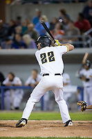 Nick Giarraputo (22) of the Sussex County Miners at bat against the New Jersey Jackals at Skylands Stadium on July 29, 2017 in Augusta, New Jersey.  The Miners defeated the Jackals 7-0.  (Brian Westerholt/Four Seam Images)