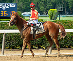 July 5, 2021: First Captain, ridden by Jose Ortiz, wins the 2021 running of the G3 Dwyer S. at Belmont Park in Elmont, NY. Sophie Shore/ESW/CSM