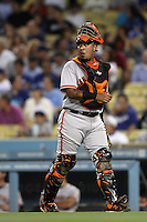 Hector Sanchez #29 of the San Francisco Giants during a game against the Los Angeles Dodgers at Dodger Stadium on August 21, 2012 in Los Angeles, California. San Francisco defeated Los Angeles 4-1. (Larry Goren/Four Seam Images)