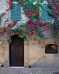 Tuscany, Italy<br /> Vine covered wall with door way and shutters in a hilltown plaza of Monticchiello