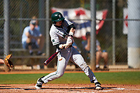 Dartmouth Big Green Trevor Johnson (36) bats during a game against the Omaha Mavericks on February 23, 2020 at North Charlotte Regional Park in Port Charlotte, Florida.  Dartmouth defeated Omaha 8-1.  (Mike Janes/Four Seam Images)