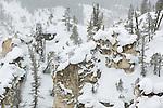 Snowy Cliff, Yellowstone Canyon, Yellowstone NP, WY, USA