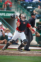 Fort Wayne TinCaps catcher Austin Hedges #24 looks for a pop up in front of umpire Lee Myers during a Midwest League game against the Dayton Dragons at Parkview Field on August 19, 2012 in Fort Wayne, Indiana.  Dayton defeated Fort Wayne 5-1.  (Mike Janes/Four Seam Images)
