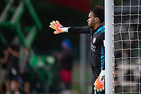 LAKE BUENA VISTA, FL - JULY 31: Pedro Gallese #1 of Orlando City SC giving his orders during a game between Orlando City SC and Los Angeles FC at ESPN Wide World of Sports on July 31, 2020 in Lake Buena Vista, Florida.