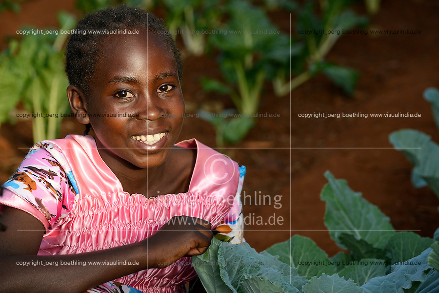 KENYA, Kisumu County, Kaimosi, NGO RSP Rural Service Programme, promotes healthy nutrition for small scale farmer, girl in vegetable garden / KENIA, NGO RSP Rural Service Programme, Unterstuetzung von Kleinbauern beim biologischen Anbau von traditionellen Sorten, Sortenvielfalt und Verbesserung einer gesunden Ernaehrung, Farmer Haren Mugambi, 69 Jahre, baut Gemuese in kleinem Gewaechshaus an, seine Enkelin Yvonne, 10 Jahre