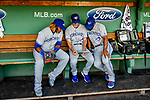 22 June 2019: Toronto Blue Jays third baseman Vladimir Guerrero Jr. (left) looks over game data with teammates in the dugout prior to a game against the Boston Red Sox at Fenway :Park in Boston, MA. The Blue Jays rallied to defeat the Red Sox 8-7 in the 2nd game of their 3-game series. Mandatory Credit: Ed Wolfstein Photo *** RAW (NEF) Image File Available ***