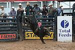 ABBI - Decatur, TX - 6.3.2016 - Women