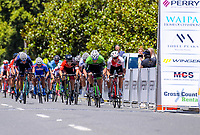 The sprint to the finish. Stage Two - Hydro Heat (Cambridge -Roto o rangi - Pukeatea). 2019 Grassroots Trust NZ Cycle Classic UCI 2.2 Tour from St Peter's School in Cambridge, New Zealand on Thursday, 24 January 2019. Photo: Dave Lintott / lintottphoto.co.nz