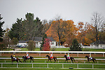 October 31, 2015:  Horses walk to the post for the Breeders' Cup Turf at Keeneland Race Track in Lexington, Kentucky. Evers/ESW/CSM