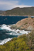 Europe/France/Corse/2B/Haute-Corse/Cap Corse/Pino: Marine de Scalo et sa tour génoise