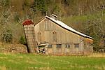 Old barn in spring.