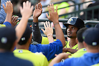 Designated hitter Jose Miguel Medina (12) of the Columbia Fireflies is greeted after scoring a run in a game against the Charleston RiverDogs on Saturday, April 6, 2019, at Segra Park in Columbia, South Carolina. Columbia won, 3-2. (Tom Priddy/Four Seam Images)
