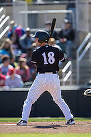 Grant Massey (18) of the Kannapolis Intimidators at bat against the Delmarva Shorebirds at Kannapolis Intimidators Stadium on April 13, 2016 in Kannapolis, North Carolina.  The Intimidators defeated the Shorebirds 8-7.  (Brian Westerholt/Four Seam Images)
