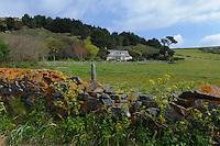Haus und Weide an der Westküste, Insel Herm, Kanalinseln