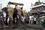 Elephents decorated in Golden ornaments during Atmachamayam (starting) of Onam festival, Tripurnithura near Ernakulam, Kerala, India.