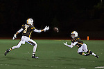 2014 football: St. Francis High School vs. Archibishop Mitty in CIF Finals